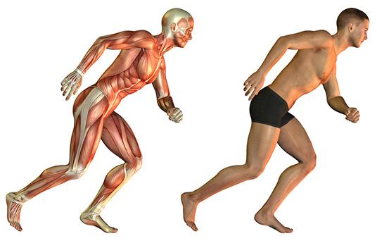 Tipps gegen Muskelkater: Was tun, wenn die Muskeln zwicken?